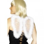 Ladies Glitter Wings