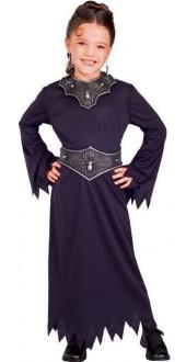 Spider Queen Fancy Dress Costume