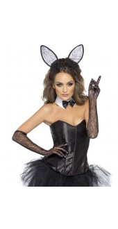 Ladies Sexy Fever Lace Bunny Fancy Dress Kit